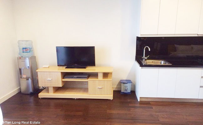 Full furnished 1 bedroom apartment for rent in lancaster for 1 bedroom apartment for rent